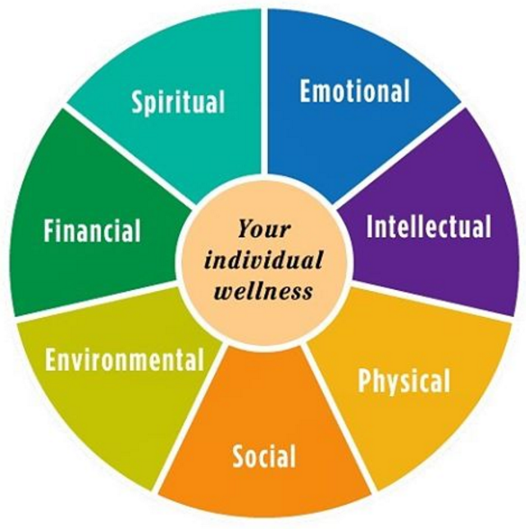 identify key aspects of physical intellectual emotional and social development at each of the life s Open document below is an essay on describe, physical intellectual, emotional and social development for each of the life stages of an individual from anti essays, your source for research papers, essays, and term paper examples.